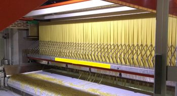 800 kg/hour pasta production lines